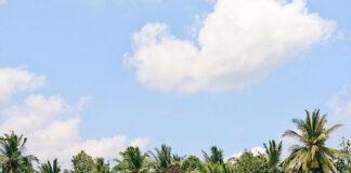 Bali cosa vedere e fare ad Ubud e Seminyak